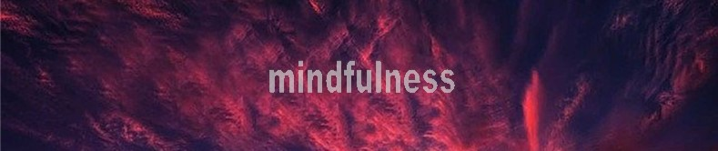 Mindfulness training: courses and classes
