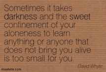 Quotation-David-Whyte-sweet-darkness-Meetville-Quotes-274842