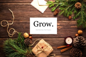 Mindfulness in Bedford for a Christmas Gift!